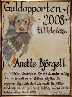 guldapport2008
